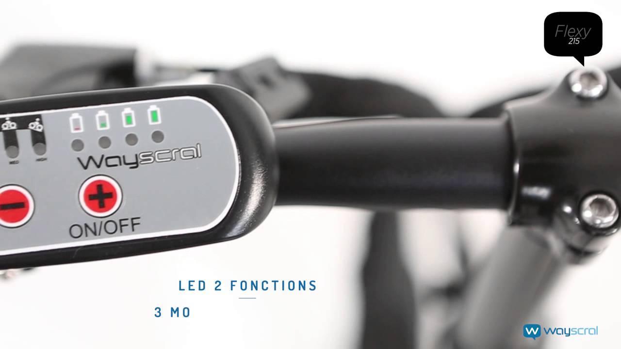 Vélo électrique pliable wayscral flexy 215